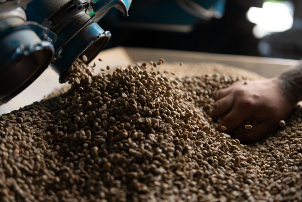 Versie Koffie bonen